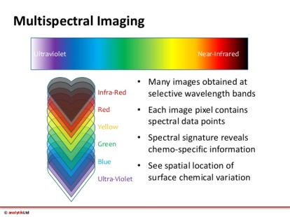 multispectral-imaging-of-food-quality-with-videometerlab3-5-638